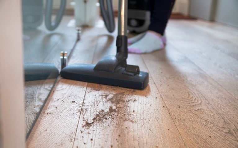 How To Use A Steam Mop On Laminate Floors Cleanipedia