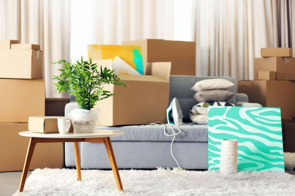 Moving boxes with new home essentials in the home
