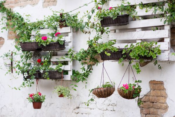 hanging baskets in a garden for decoration