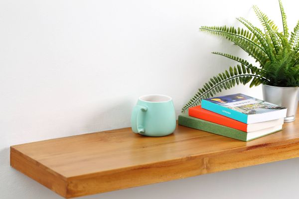Shelf with plant and book