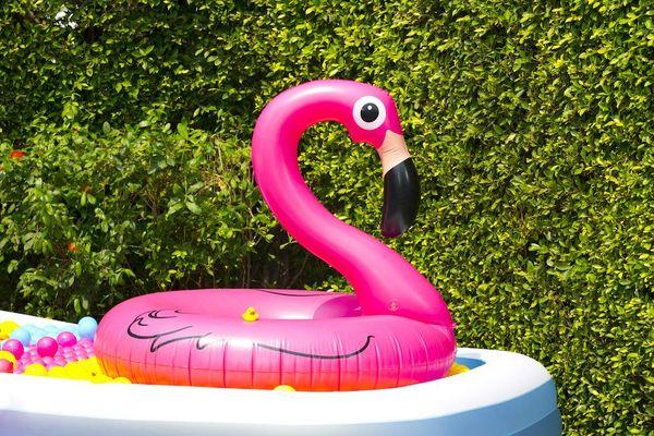 flamingo inflable rosado adentro de una pileta