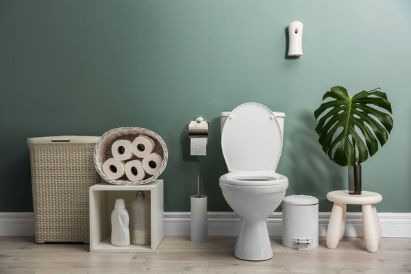 How to Remove Odours from your Toilet | Cleanipedia