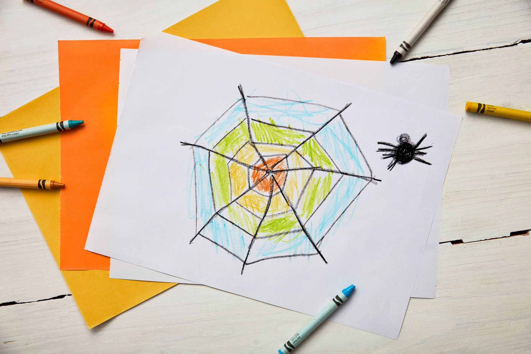 drawing of a spider and a cobweb