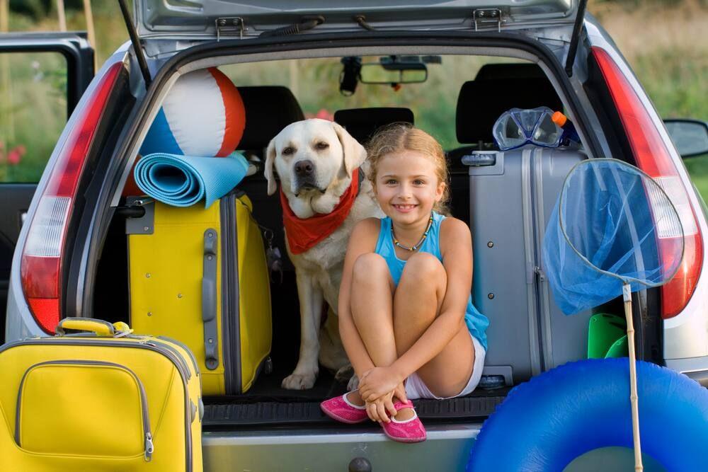 Evcil Hayvanla Tatile Nasıl Çıkılır?