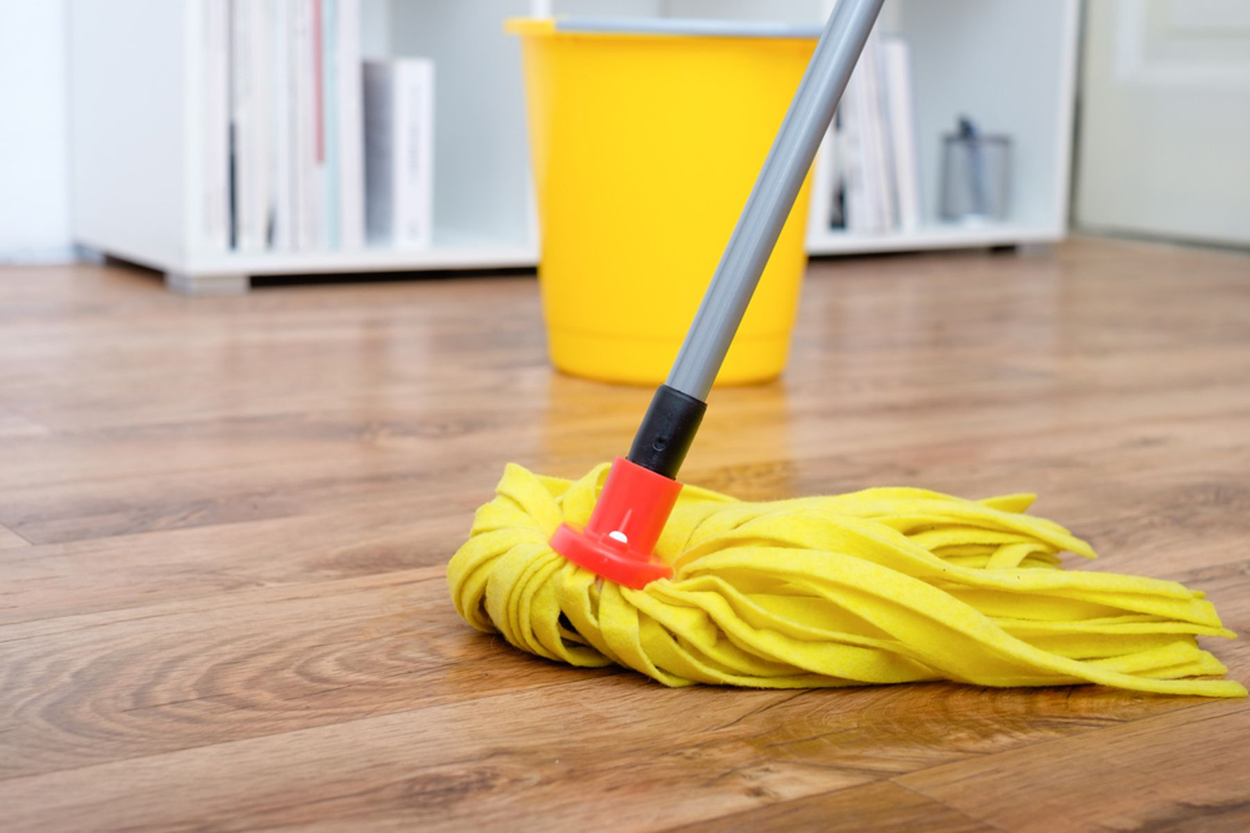 Mop and bucket cleaning a laminate floor