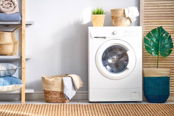 Washing machine in laundry room with plant