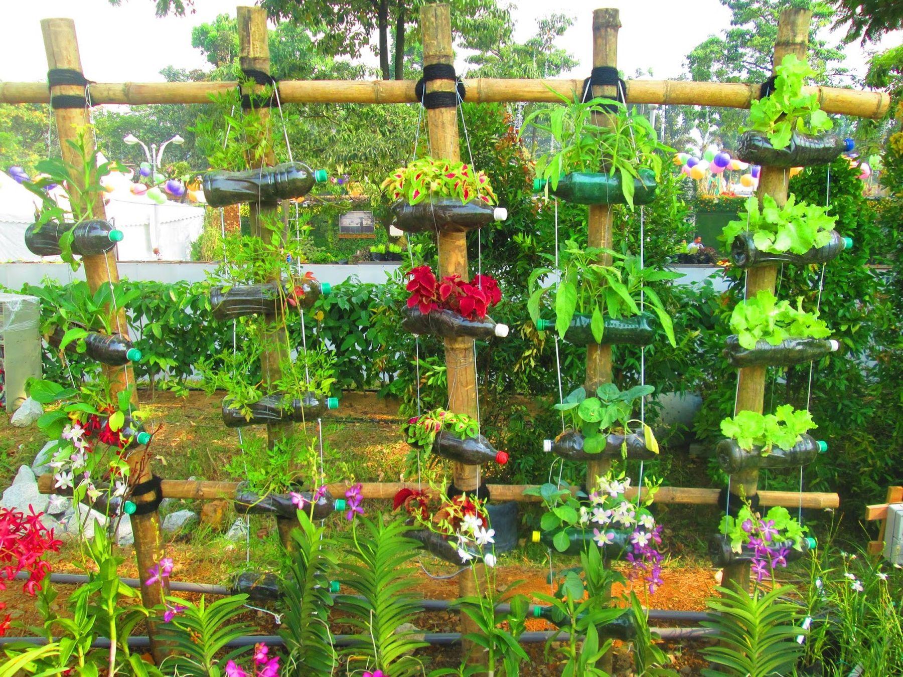 Làm vườn đứng từ những chậu hoa được làm từ chai nhựa