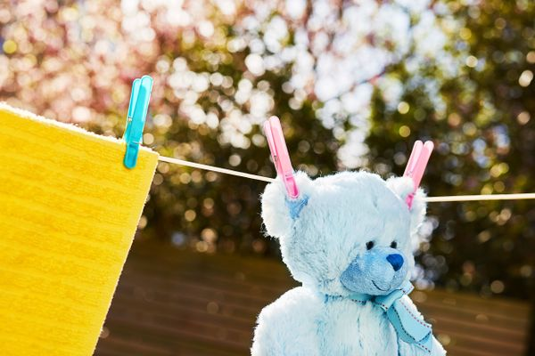 a teddy bear outdoors on a clothesline