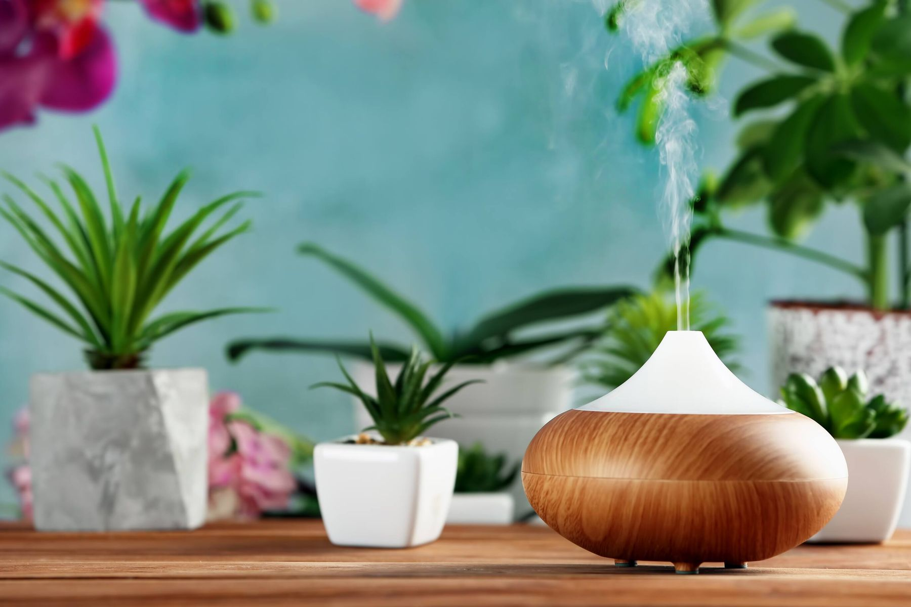 Making an Eco-Friendly Toilet Freshener at Home Has Never Been Easier