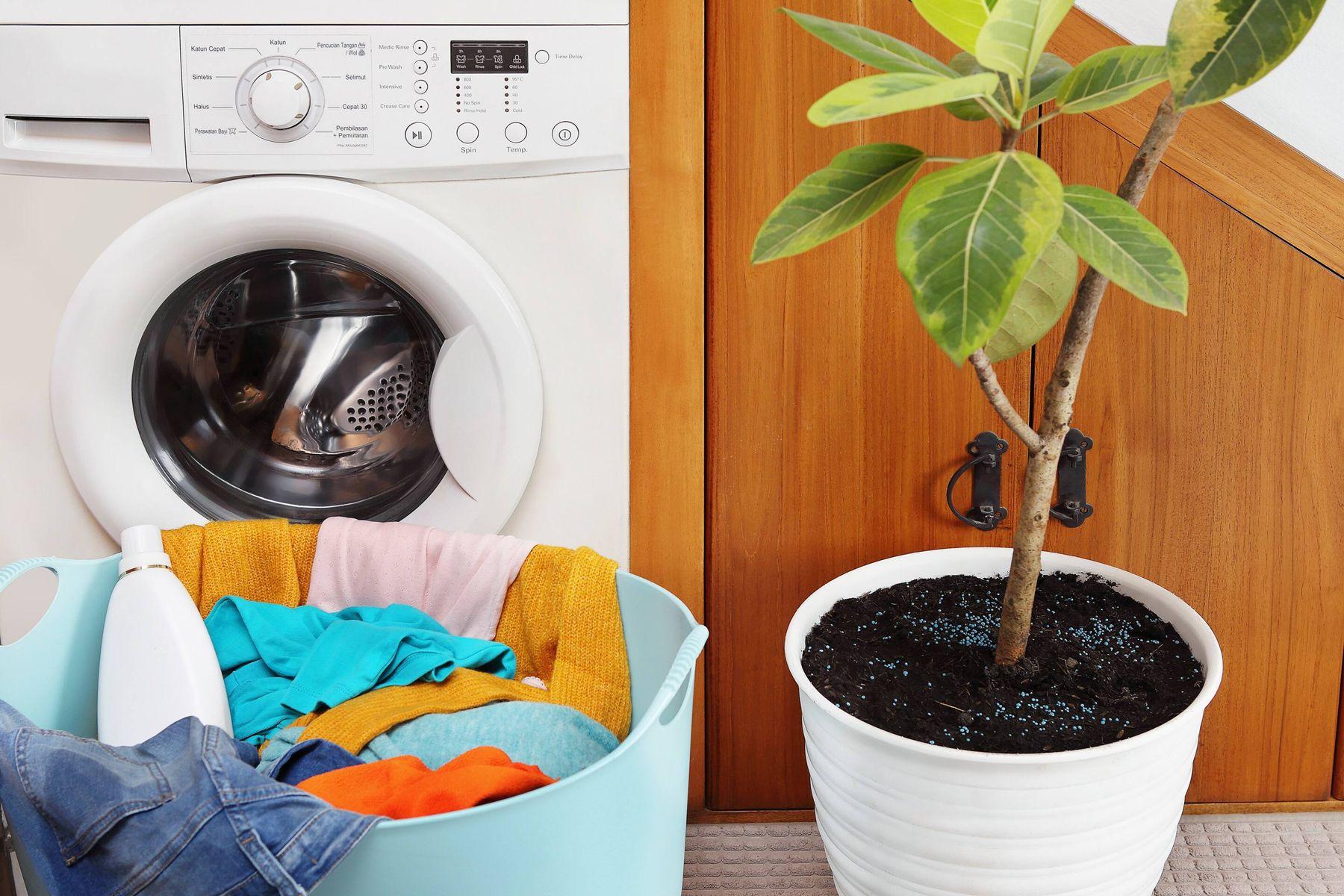 washing machine with plant