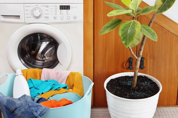 washing machine with plant
