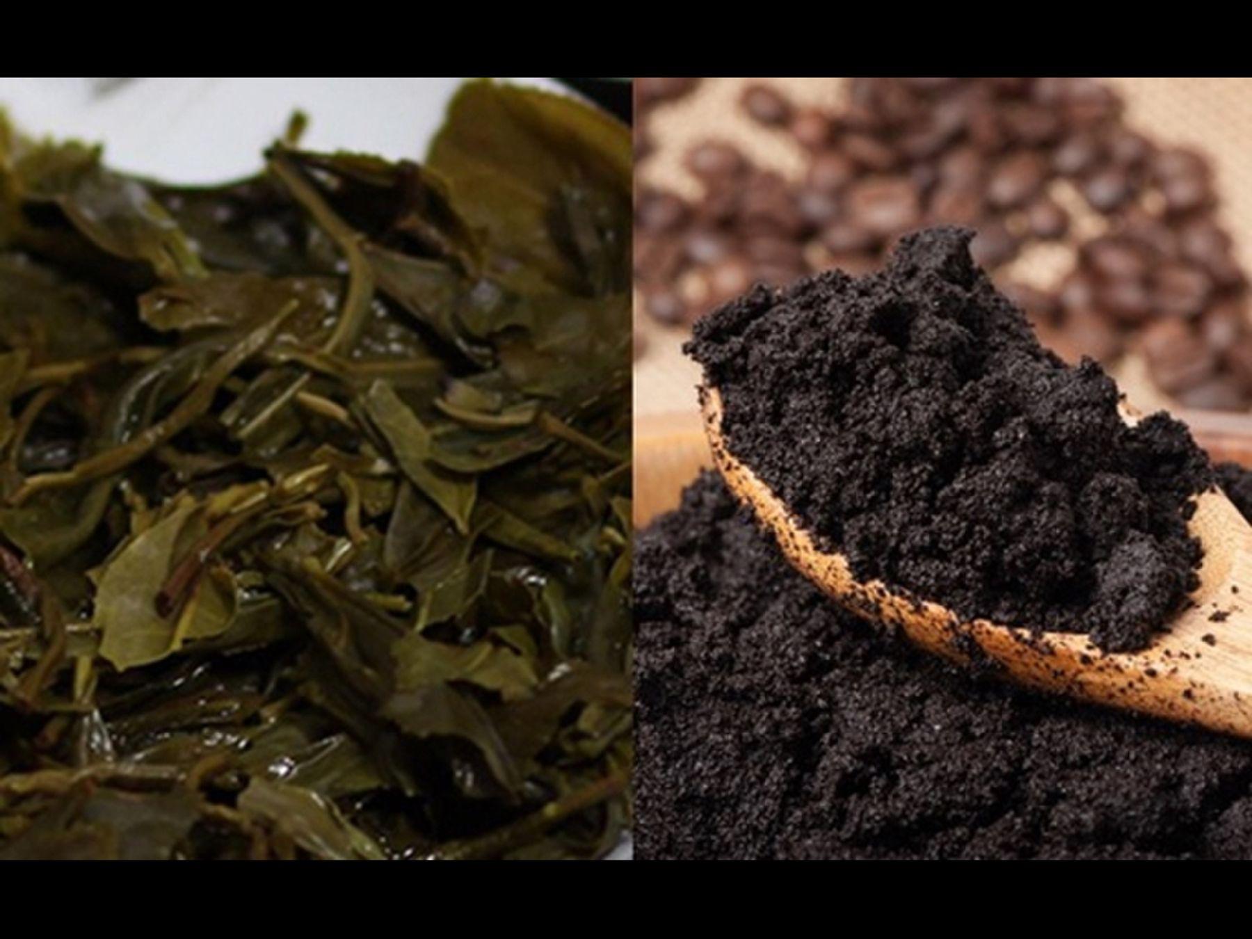 Do bã trà và cà phê