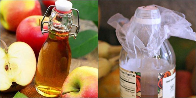 Cách diệt ruồi bằng giấm táo