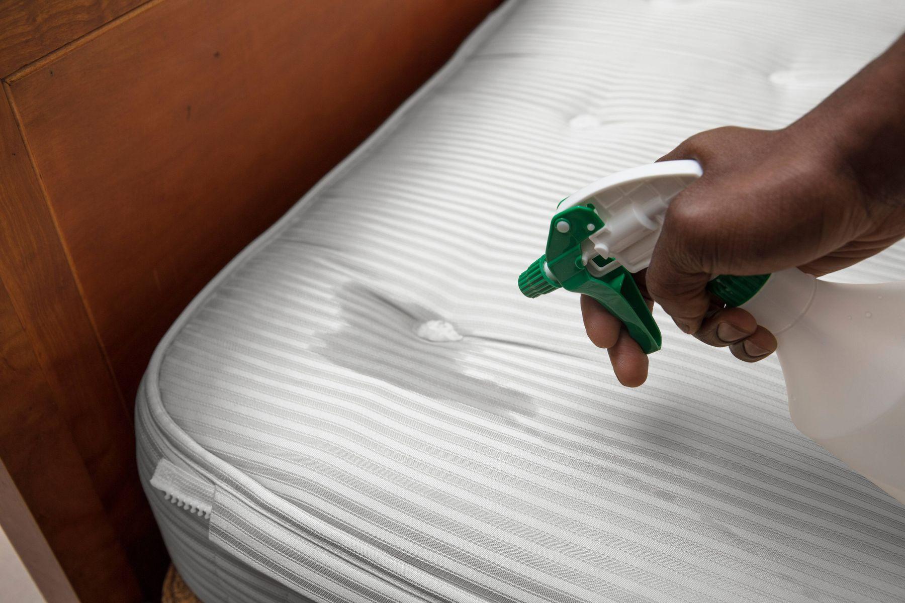 cara mencuci spring bed membersihkan kasur