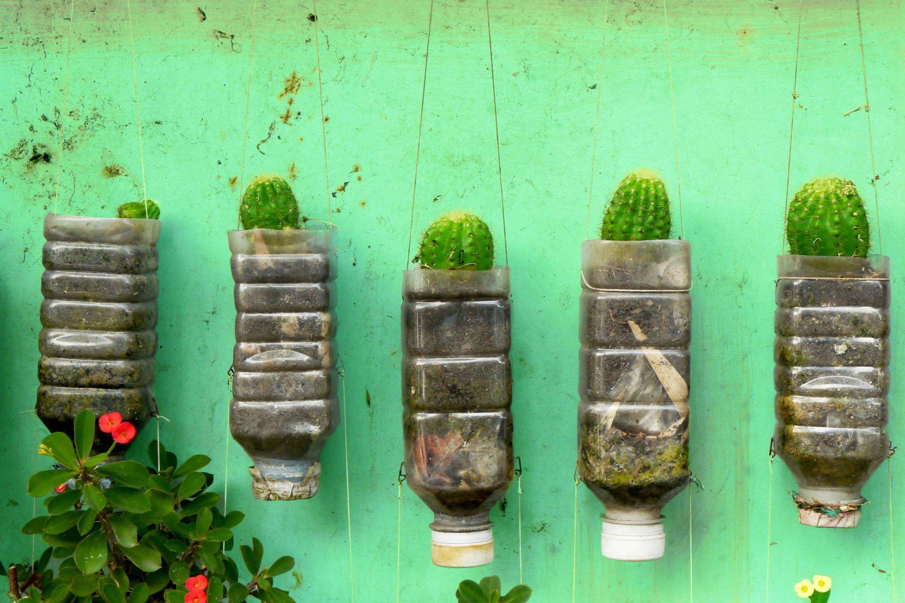 Bricolage Con Bottiglie Di Plastica.5 Idee Per Creare Porta Piante Fai Da Te Cleanipedia