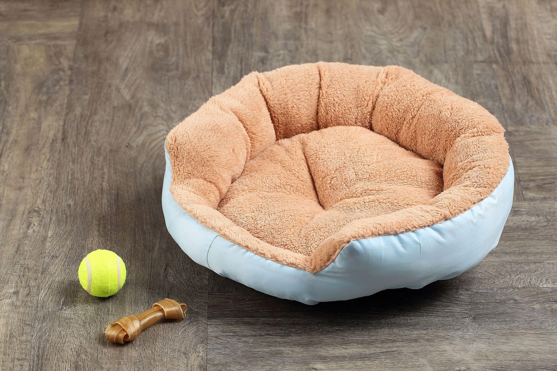 balle de tennis, os et lit de chien sur le plancher en bois