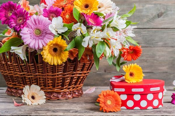 Bí quyết lựa chọn hoa tươi dịp Tết đến