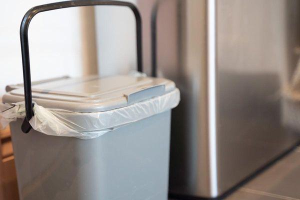 O que é lixo orgânico: suas dúvidas respondidas.