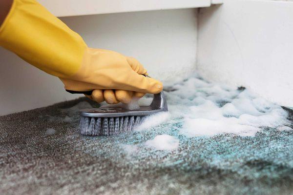 como-tirar-manchas-de-moveis-carpetes-tapetes-e-paredes