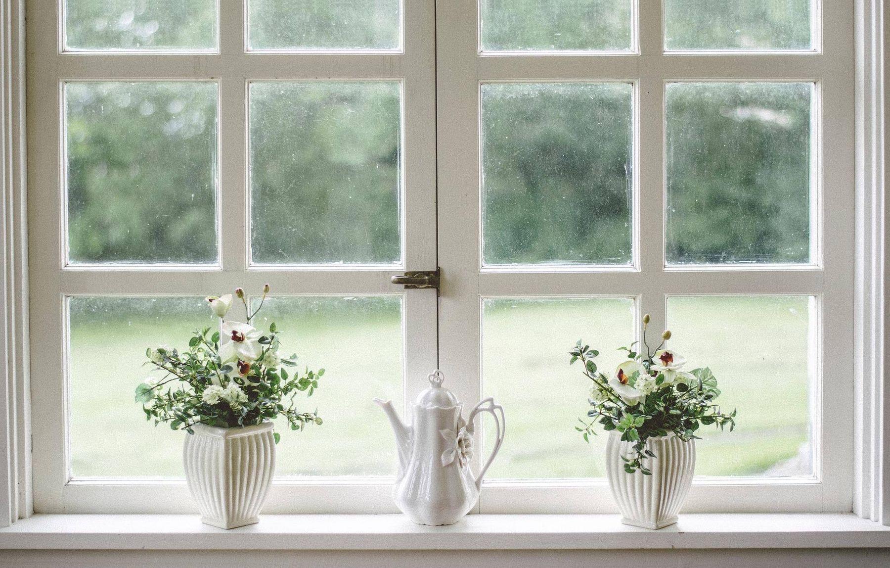 lưu ý trang trí cây xanh trong nhà