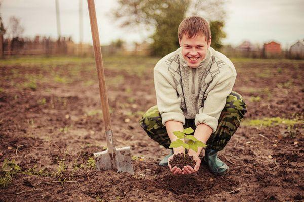 Nên trồng rau gì vào mùa mưa không bị ngập úng?