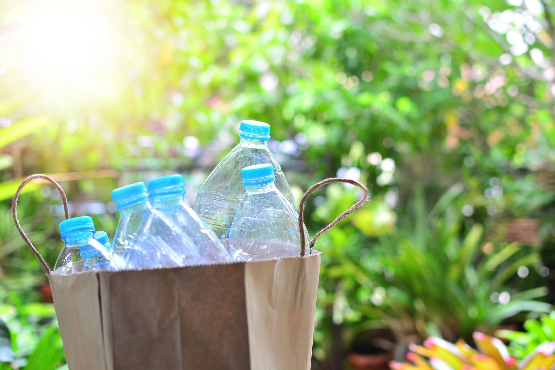 Plastic bottles inside a recyclable bag