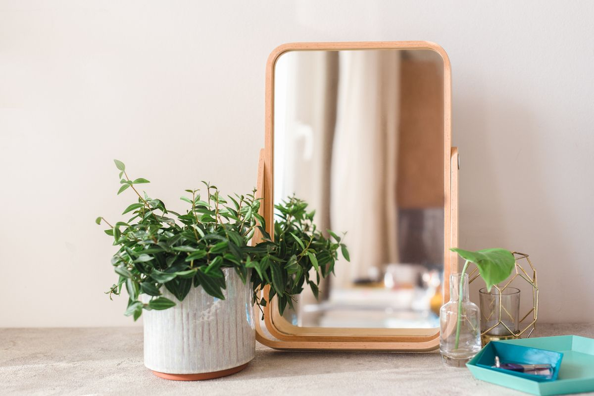 A mirror and plant on a counter