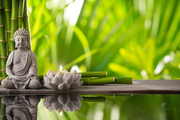 What is Feng Shui? Meaning and Application