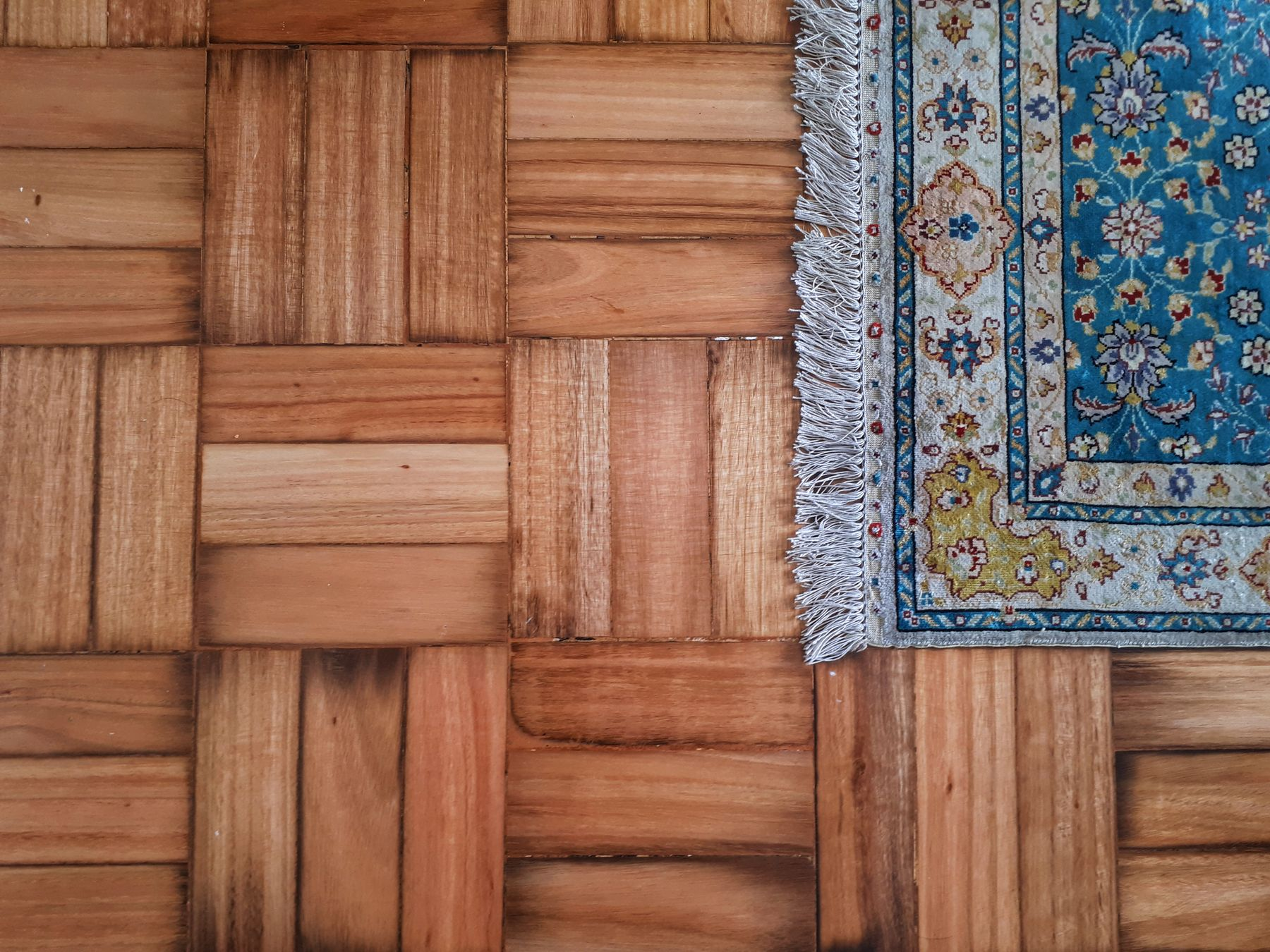 Step 4: Cómo limpiar alfombras correctamente