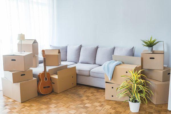 Caixas de papelão para mudança, violão e vasos no chão da sala