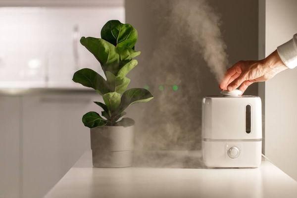 Manfaat Humidifier untuk Kesehatan yang Jarang Diketahui