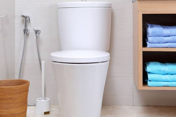 clean toilet after being cleaned