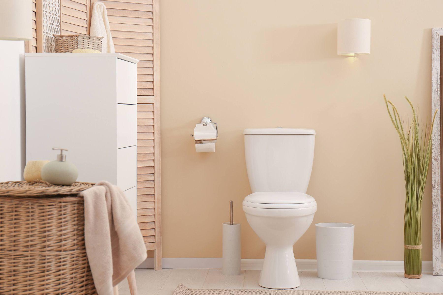 Vì sao bạn cần diệt sạch côn trùng trong nhà vệ sinh?