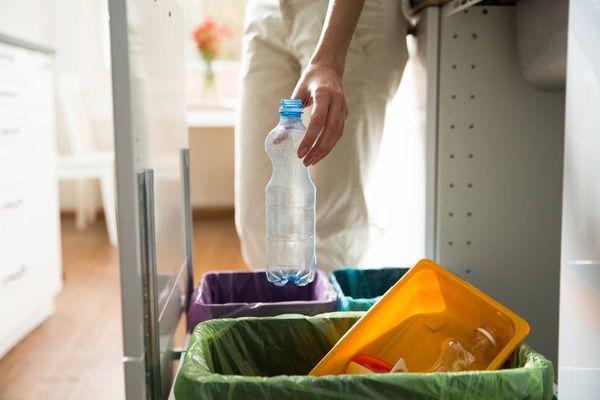 Pengertian Sampah Organik dan 5 Alasan Anda Harus Memilah Jenis Sampah Sebelum Membuangnya