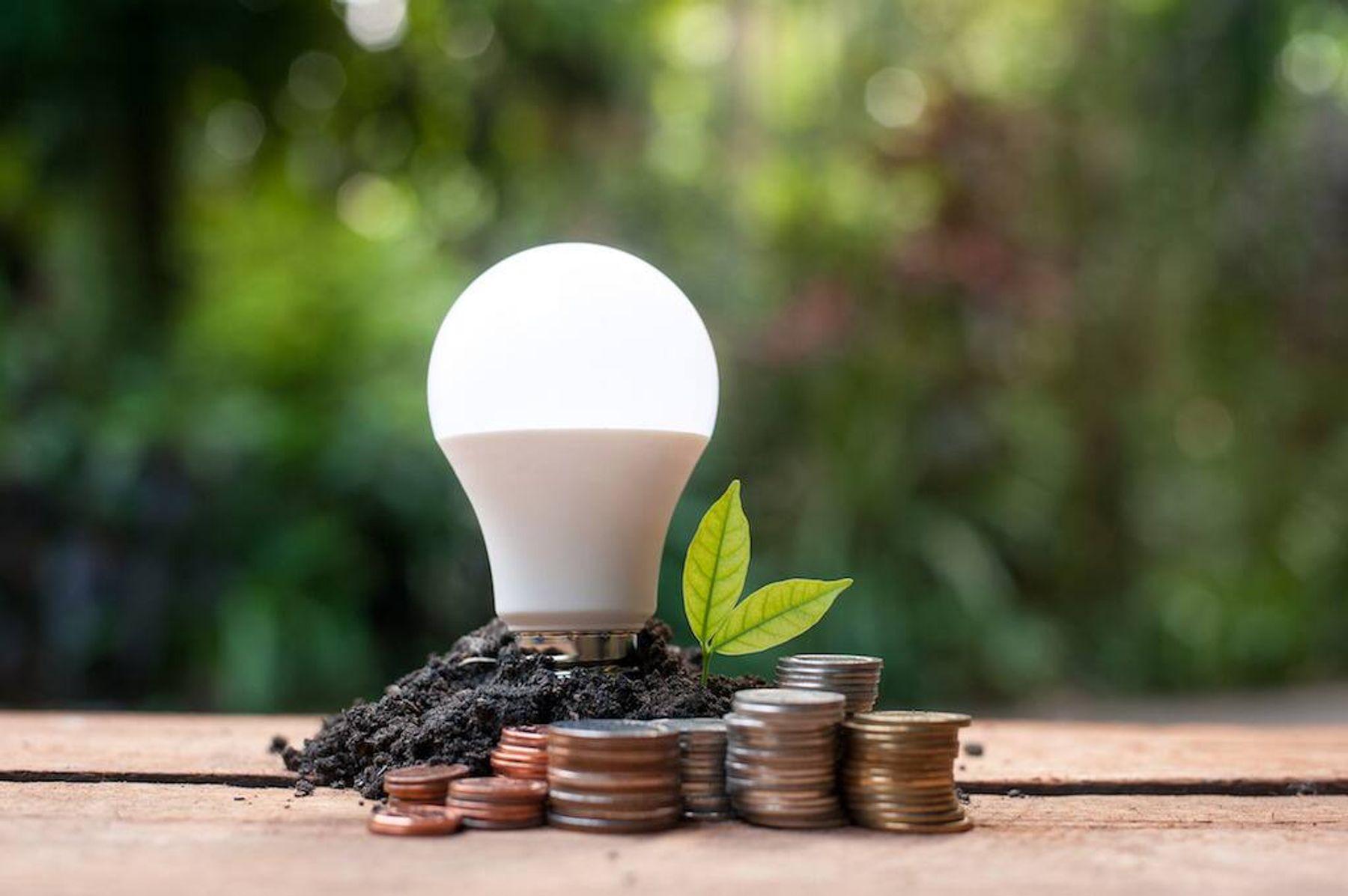 cách làm mát phòng - hạn chế sử dụng bóng đèn tạo nhiều năng lượng