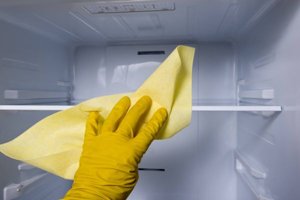 hand cleaning empty freezer