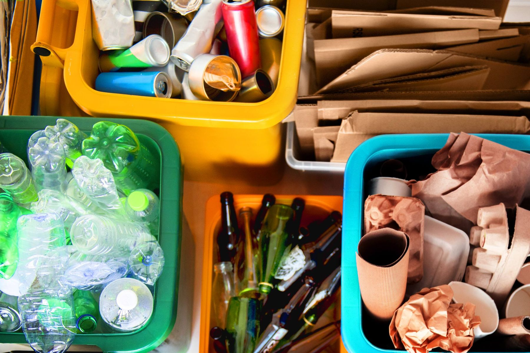 reducing single use of plastic by sorting recyclables