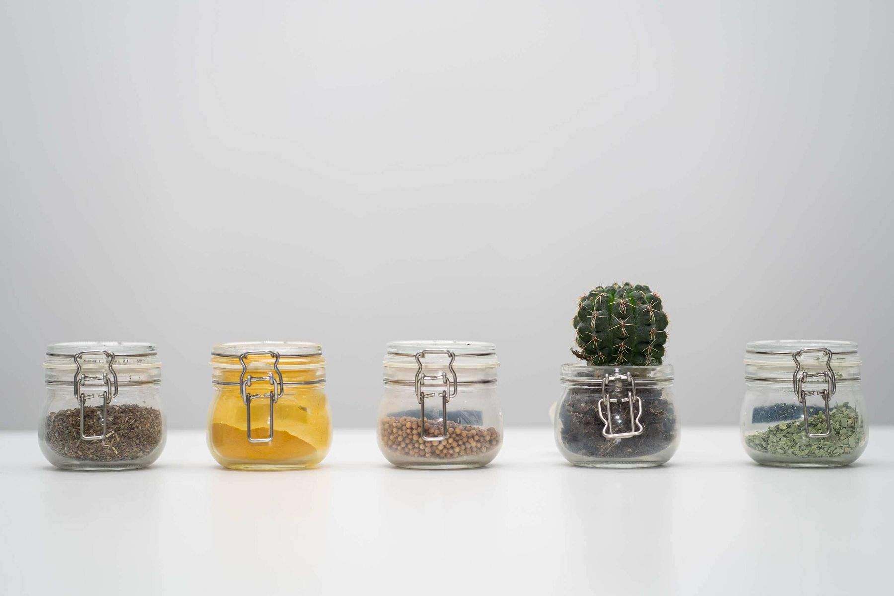 glass pots with spices and plants
