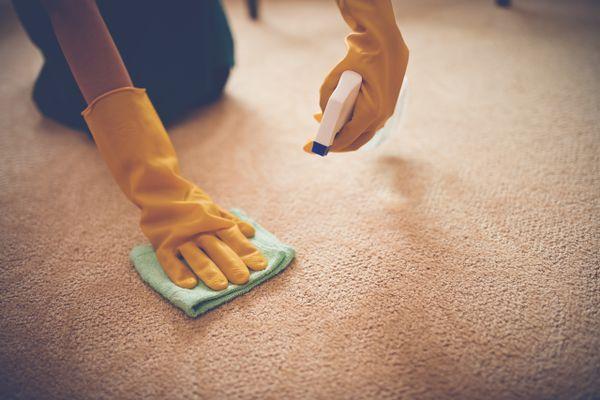 Cómo desinfectar la alfombra