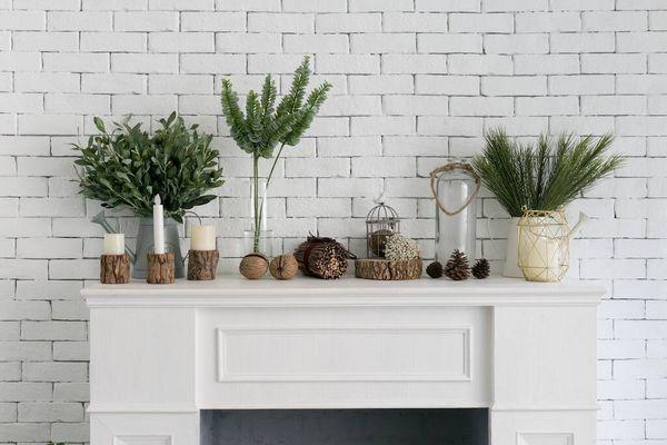 Top 17 loại cây lọc không khí hiệu quả, dễ chăm sóc bạn có thể trồng tại nhà