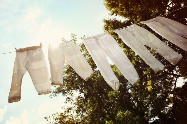 Cinco calças brancas penduradas em um varal preso num jardim, com árvores e vista para céu azul