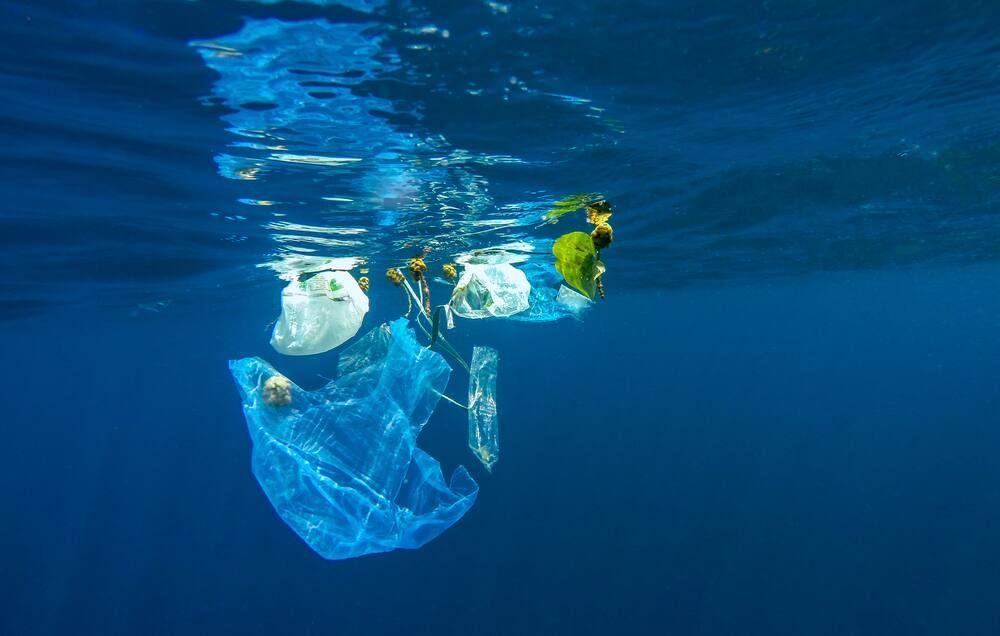Pentingnya Memilah Sampah Organik dan Non Organik