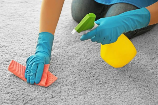 a person cleaning the carpet with cleaning products