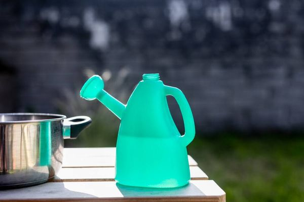 Tiết kiệm và bảo vệ nguồn nước bằng 5 hành động nhỏ này!
