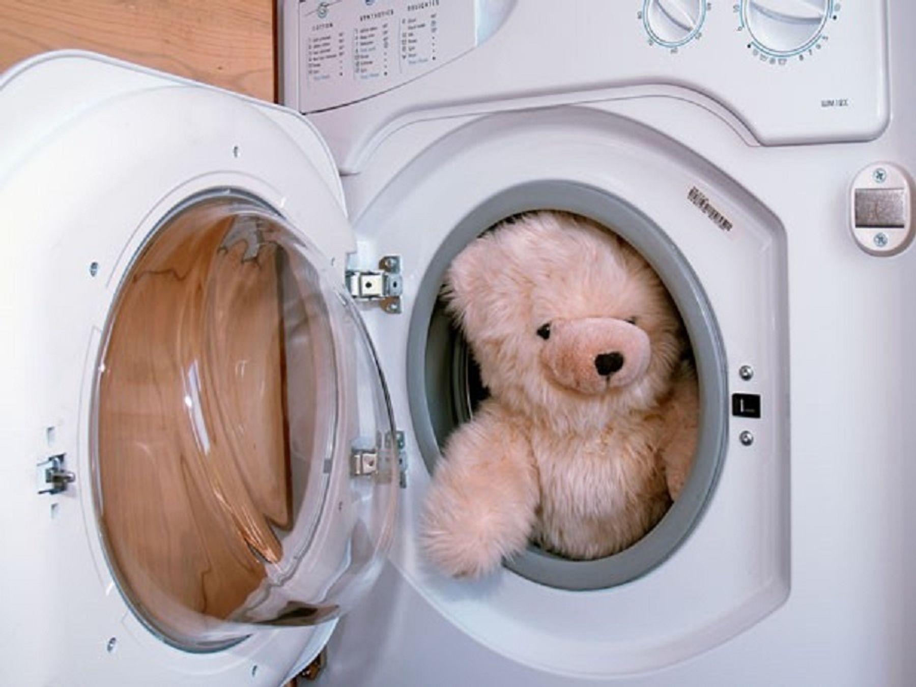 Step 3: Cách giặt gấu bông Lớn tại nhà bằng Máy giặt