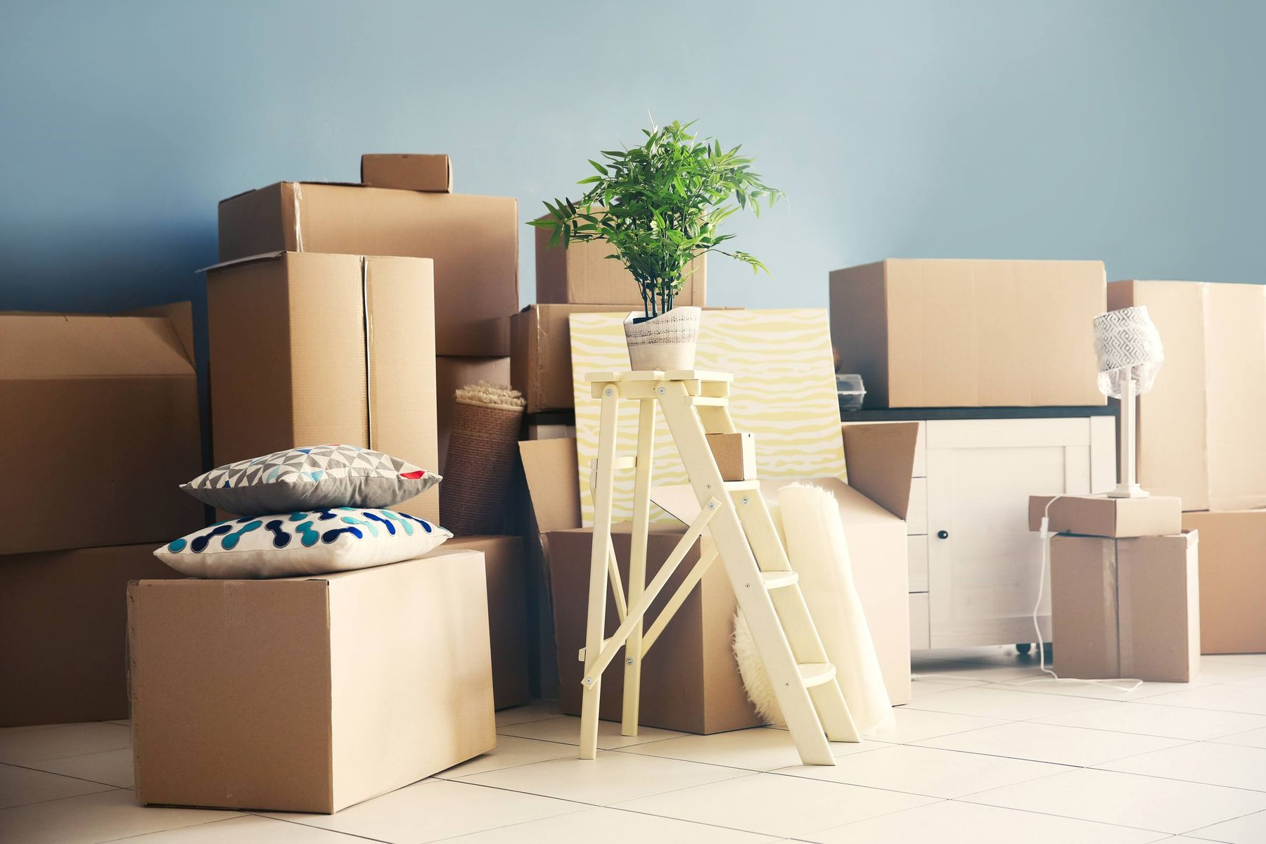 Cardboard boxes, pillows and potted plant on blue background wall