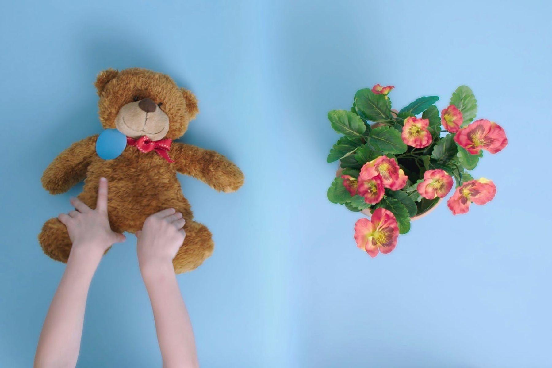 lapsen kädet, joilla on nallekarhu ja kukka