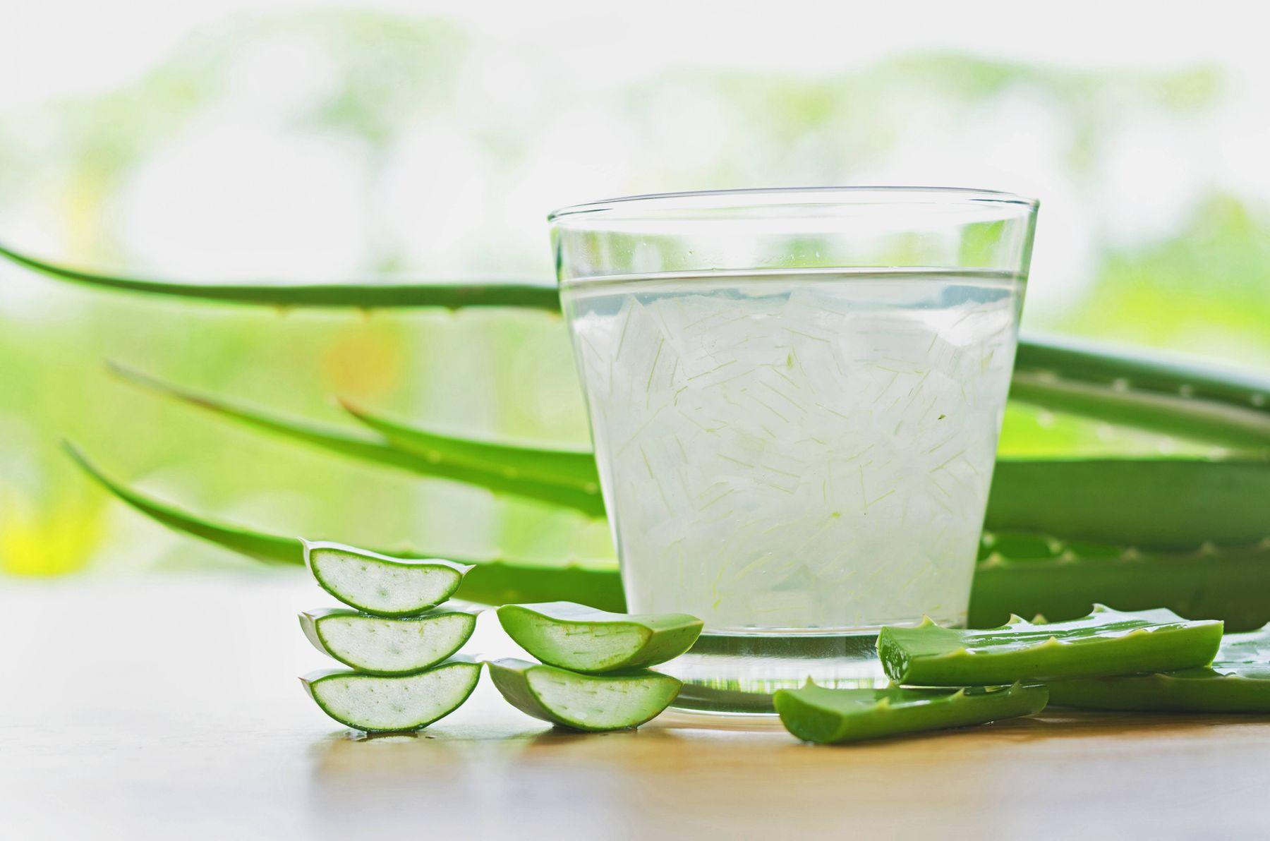 İçerdiği aminoasit, vitamin ve mineraller ile aloe vera insan sağlığı için son derece yararlı bir besin kaynağı.