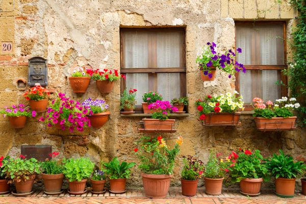 Simple Steps to Deep Clean your Flower Pots