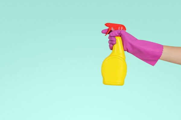 hand with purple rubber glove holding yellow spray with red cap